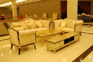 Elegant Classical Carved Wooden Living Room Sofa Set (A11011)