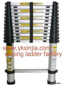 Aluminium Telescopic Ladder (XP-T380)