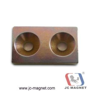 High Quality Magnet pictures & photos