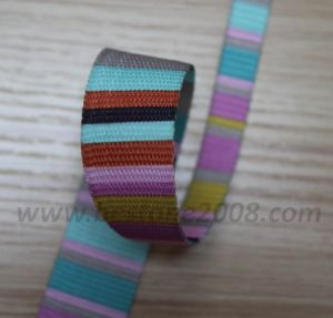 High Quality Heat Transfer Variable Webbing for Bag #1401-108 pictures & photos