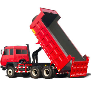 Professional Supplier of Dump Truck pictures & photos