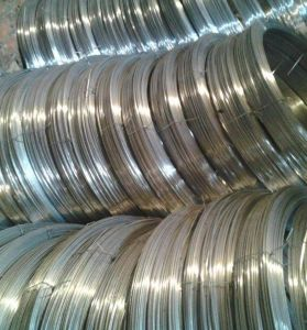 Hot Dipped Galvanized Oval Steel Wire, High Tensile Steel Oval Wires pictures & photos