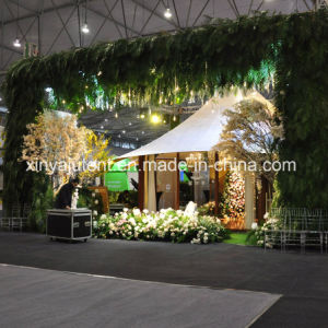 Customized Safari Tent for Hotel pictures & photos