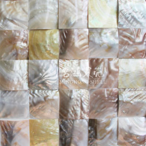 Freshwater Shell Nature Brown Color 60*60mm Arch Face Mosaic Tile pictures & photos