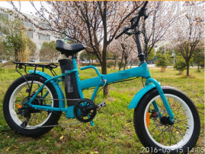 Steel Front Fork Ebike 48V 750W Folding Electric Bike pictures & photos