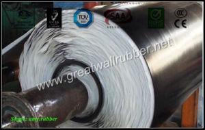 Floor Mat SBR+EPDM+NBR+Neoprene+Viton+Silicone Rubber Sheet pictures & photos
