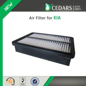China Auto Parts Quality Supplier Air Filter for KIA pictures & photos
