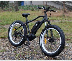 24inch Electric Bicycles with Disc Brake pictures & photos