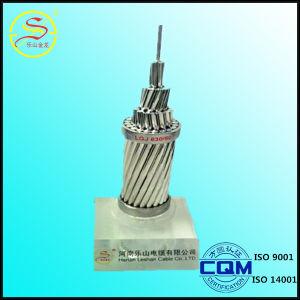Standards BS ASTM IEC DIN as JIS Spln ACSR Conductor pictures & photos