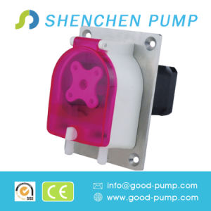 Peristaltic Metering Pump with Stepper Motor 0-1000ml/Min 12-24V pictures & photos
