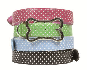 Polka DOT Fashion Pet Collar, Pet Products Supply pictures & photos