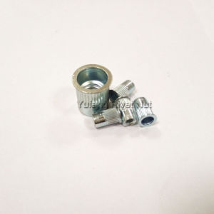 Zinc Plating Small Head Knurled Body Rivet Nut pictures & photos