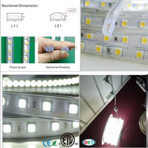 6000k Cool White LED Strip Light 5050 3528 5630 220V pictures & photos