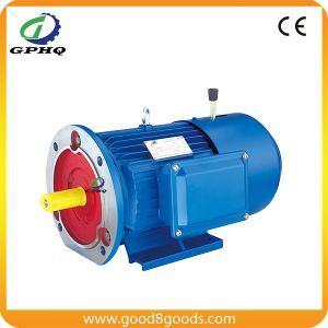 Yej /Y2ej/Msej Aluminum Body 1400rpm AC Electric Motor pictures & photos