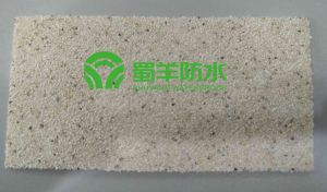 SEP3000 HDPE Waterproof Membrane 1.2mm Sand Surface pictures & photos