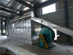 High Quality and Moderate Price Fruit Dryer Conveyor Dryer