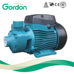 Domestic Copper Wire Electrical Peripheral Water Pump with European Plug pictures & photos