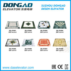 Observation Glass Sightseeing /Obsevation Lift Ds-J230 pictures & photos