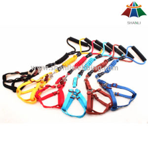 Hot-Sale High-Quality Solid Color 10mm Polyester/Nylon Leash & 15mm Adjustable Harness pictures & photos