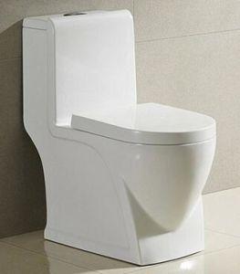 Sanitary Ware Bathroom One-Piece White Ceramic Washdown Toilet pictures & photos