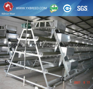 3 / 4 Tiers Chicken Broiler Cage pictures & photos
