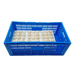 Foldable Plastic Crate Egg Crate pictures & photos