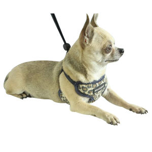 Pet Dog Puppy Colorful Flexible Harness (hns4002) pictures & photos