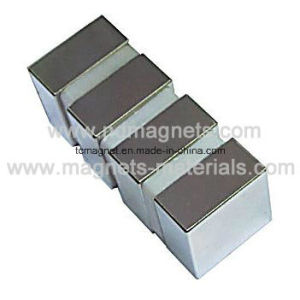 Permanent Magnets for Magnetic Lifters pictures & photos
