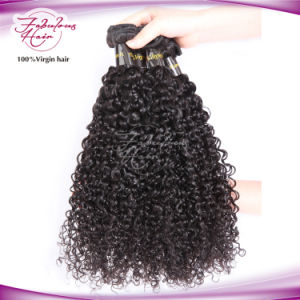 8A Jerry Curly Fashion Remy Brazilian Hair pictures & photos