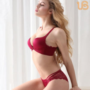 Sexy Fancy Seamless Bra Panty Set for Women pictures & photos