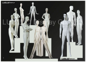Fashion Mannequin for Store Windows Display pictures & photos