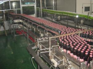 Automatic Fruit Juice Production Line pictures & photos