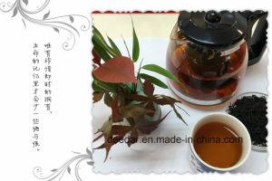 Digestion Helpful Dark Tea pictures & photos