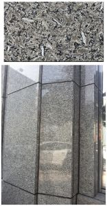 St Louis Brown Granite Building Materials pictures & photos