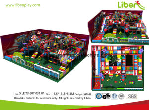 High Quality Customize Indoor Playground Equipment pictures & photos