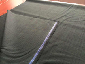 Black Frame Green Woven Fabric pictures & photos