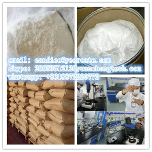 Dietary Supplement 1, 3-Dimethylpentylamine Hydrochloride/Dmaa 13803-74-2 for Weight Loss pictures & photos