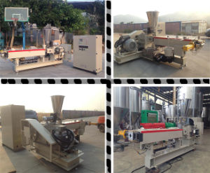 High Performance Pellet Extrusion Making Machine pictures & photos