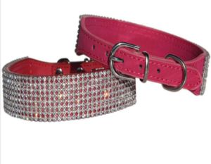 Quality Fashion Pet Dog Collars/Cat Collars Leashes (KC0059) pictures & photos