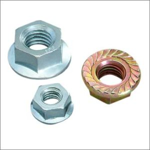 Stainless Steel Hex Flange Nut DIN 6923 pictures & photos