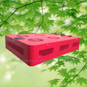 R: B 3: 1 4; 1 7: 1 Full Spectrum Red, Blue, White COB 430W LED Growlight pictures & photos