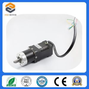 24 Volt Brushless DC Motor with ISO9001 Certification (FXD42BL SERIES) pictures & photos