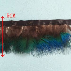 Peacock Feather Natural Color with Eye pictures & photos