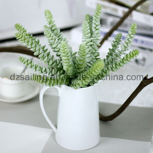 Decorative Plant Natural Touch Artificial Succulents Artificial Flower (SW17662)