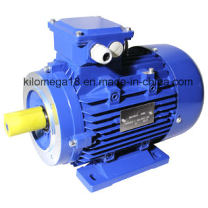 Three Phase Cast Iron Electric Motor with Ce Certificate 7.5kw pictures & photos