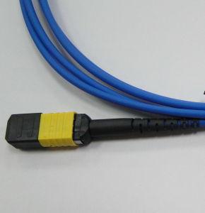 MPO/APC-MPO/APC Fiber Optic Patch Cord for Data Center pictures & photos