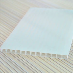 UV Coating Grade a 4mm 5mm 6mm 8mm 10mm Twin Wall Polycarbonate Sheet pictures & photos