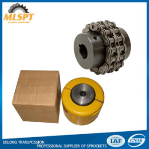 Double Roller Chain Flexible Couplings for Sale pictures & photos