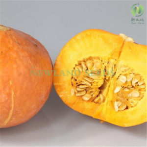 Most Popular Snow White Pumpkin Seeds to Europe pictures & photos