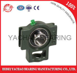 High Quality Good Price Pillow Block Bearing (Uct203 Ucp203 Ucf203 Ucfl203 Uc203)